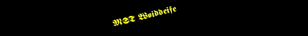 Members Only - woiddeife.de